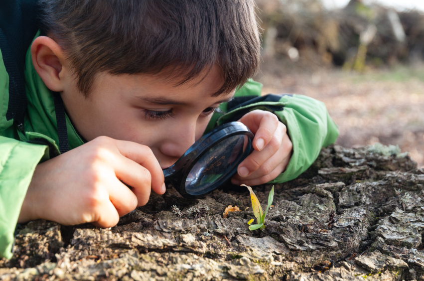 Children Can Learn By Nature
