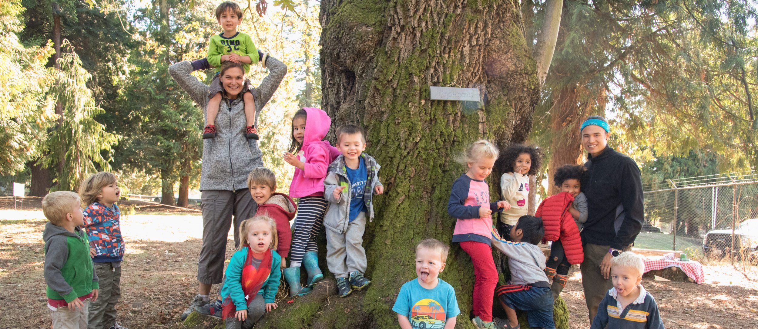 Apply For Tiny Trees Preschool Affordable Nature Rich Education