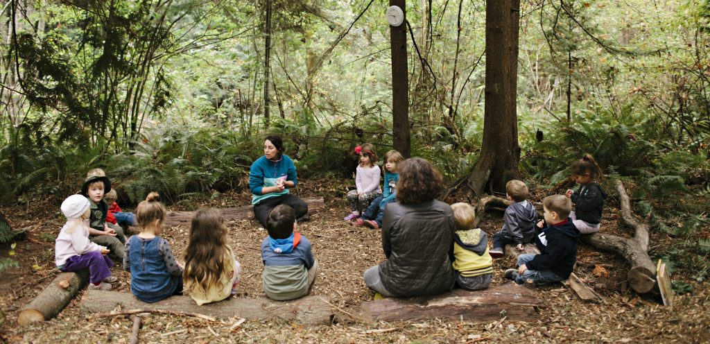 cougar-mountain-forest-school-circle-time